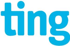 ting logo móvil